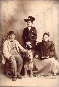 Historical fiction. Edwardian family. From Ruth Wade collection