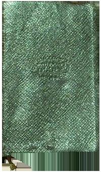 Oscar Kirk's 1919 diary